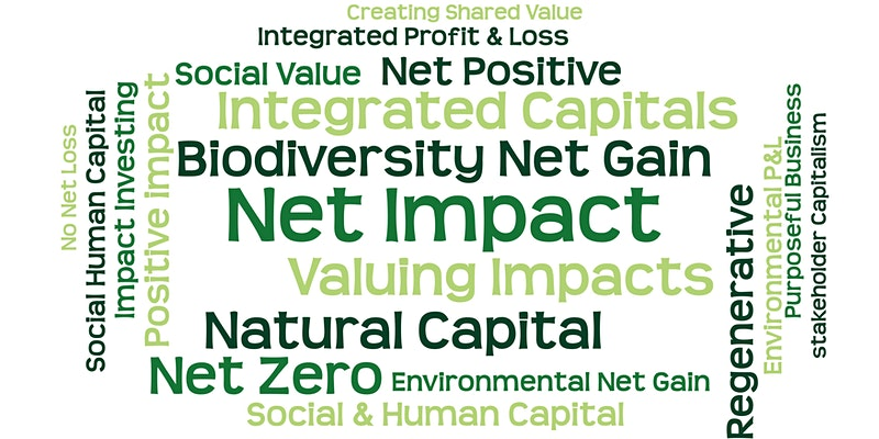 Thumbnail image for Net Impact Approaches 2021 by Sustain Value and Consciam